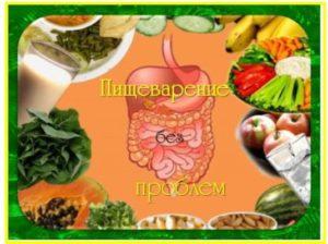 условия хорошей работы кишечника